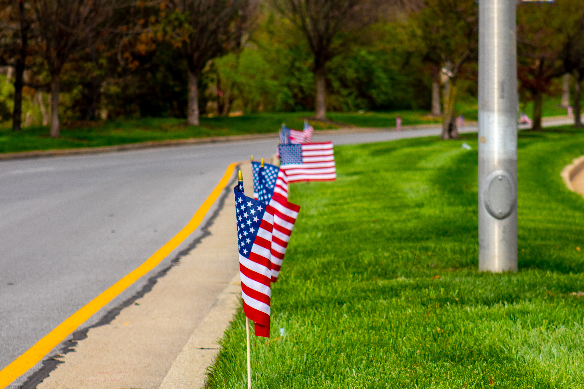 American flags line the side of a road